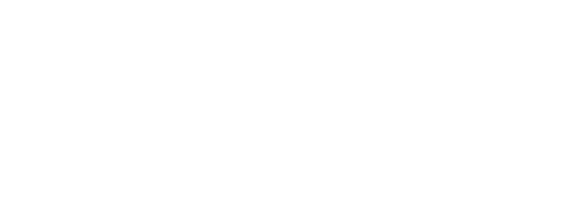 Sava Insurance Group